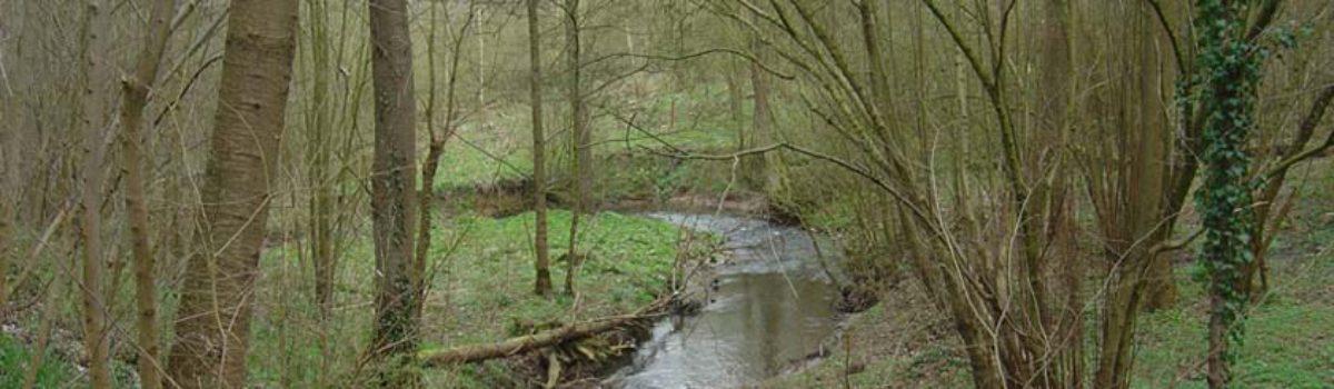 Contrat de rivière Haine – inventaire de terrain