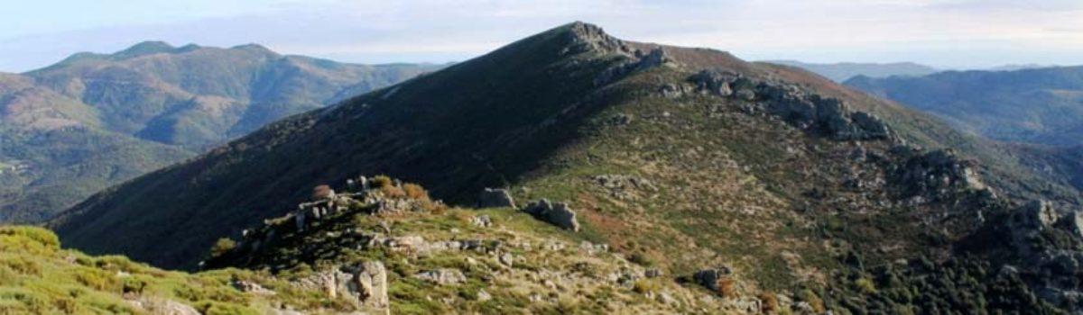 Découverte Nature Languedoc